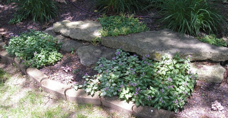 Easy Landscaping for the Busy Homeowner